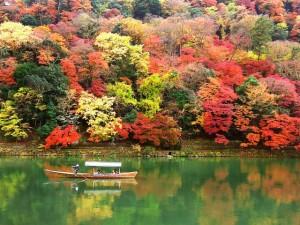 嵐山 トロッコ 当日券 紅葉