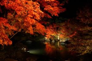 嵐山 ライトアップ 紅葉