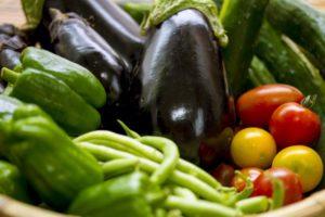 夏に植える野菜 初心者